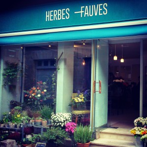 Herbes Fauves